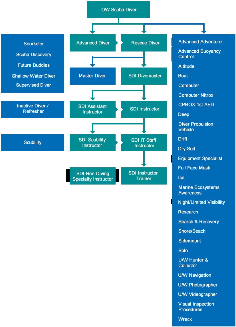 Synoptique des niveaux de plongeurs et de professionnels SDI